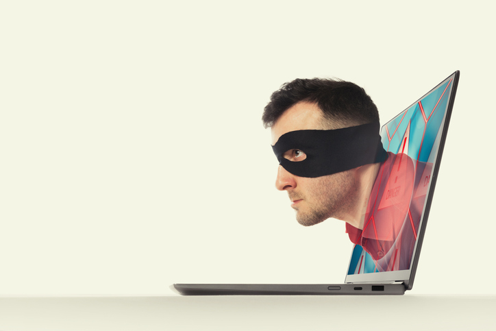 Identity Thieves: They Play, You Pay
