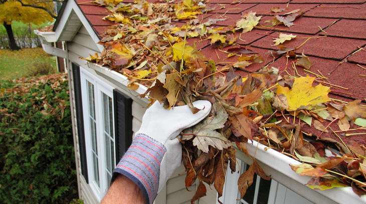 Preparing Your Home for Autumn